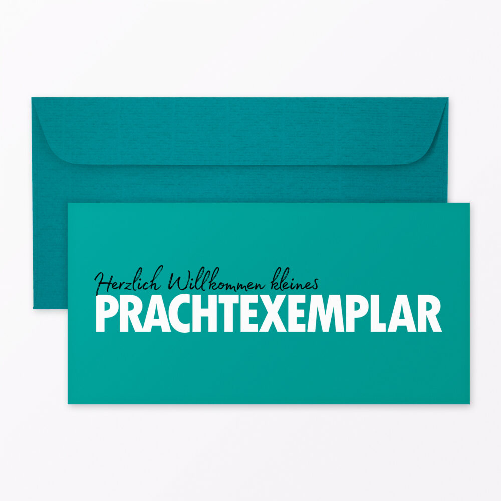 Babykarte Quot Willkommen Prachtexemplar Quot Din Lang Inkl Umschlag